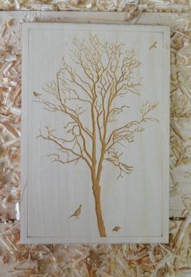 Laser Engraved Tree Postcard